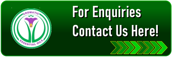 Enquiries_Button